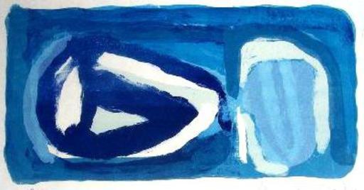 Abraham Gerardus VAN VELDE - Grabado - Le Bleu