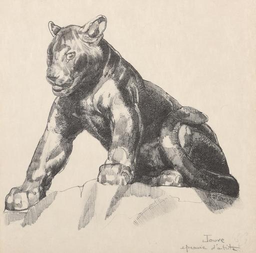 Paul JOUVE - Grabado - Jeune panthère
