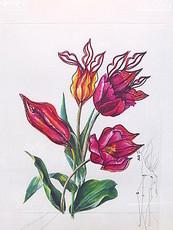 Salvador DALI - Stampa Multiplo - Kissing Tulips - Surrealistic flowers