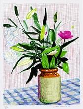 David HOCKNEY (1937) - iPad drawing lilies