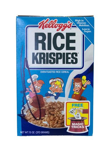 Andy WARHOL - Scultura Volume - Kellogg's Rice Krispies Box