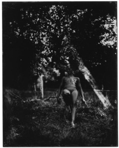 ELIZERMAN - Photography - Into the wood