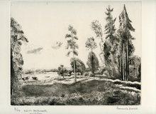 Hermine DAVID - Print-Multiple - GRAVURE ANGLETERRE SIGNÉE CRAYON NUM/50 HANDSIGNED ETCHING