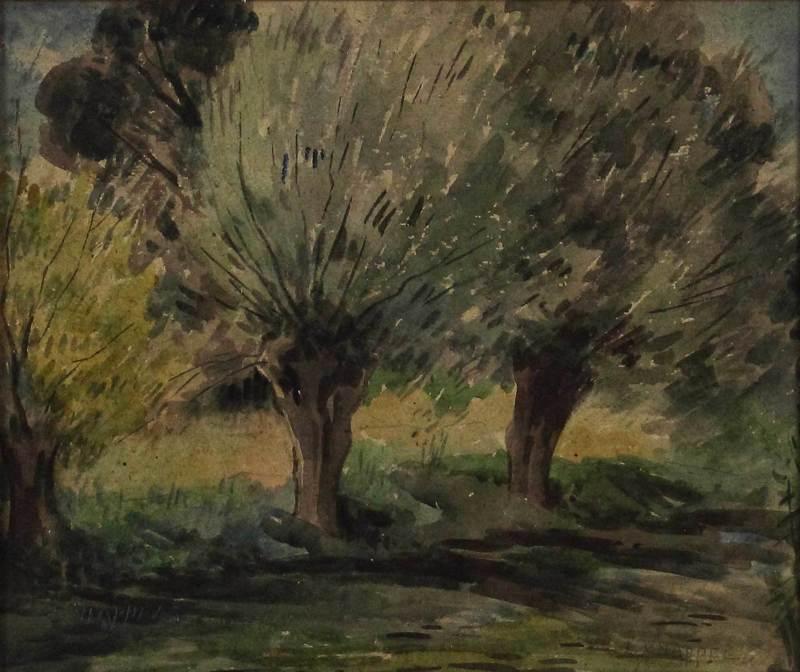 Edward CHAPPEL - 水彩作品 - Studio di alberi