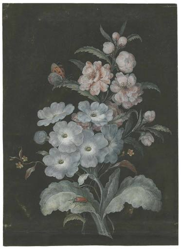 Barbara Regina DIETZSCH - Drawing-Watercolor - Blumenstilleben.