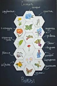 Elena KOVYLINA - Pintura - Visual Pharmacy. Pisces