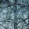 AKKADIA - Stampa Multiplo - fearlessness II / Series Sanctuary
