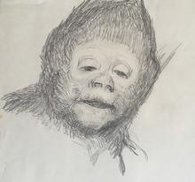 Gabriel Cornelius VON MAX - Drawing-Watercolor - Studie eines Affenkopfes