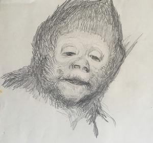 Gabriel Cornelius VON MAX - Disegno Acquarello - Studie eines Affenkopfes