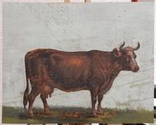Friedrich GAUERMANN - Painting - Cow