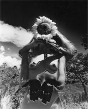 Eikoh HOSOE - Fotografia - Sunflower Song