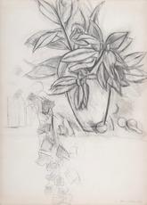 Henri MATISSE - Zeichnung Aquarell - Nature morte au lierre