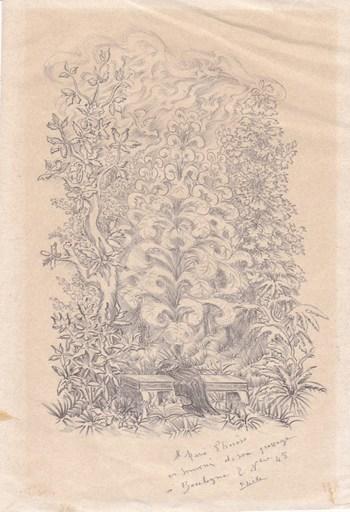 Elie LASCAUX - Dibujo Acuarela - Le Châle oublié