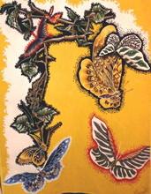 Jean LURÇAT - Tapiz - Papillons