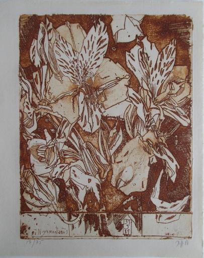 Horst JANSSEN - Print-Multiple - Nigromontanus