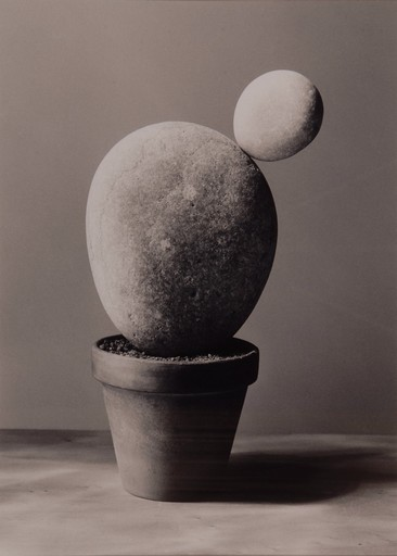 Chema MADOZ - Photography - Untitled