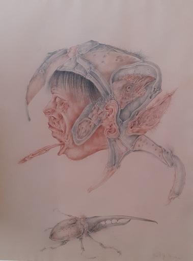 Dimitrije POPOVIĆ - Drawing-Watercolor - Portrait aux insectes