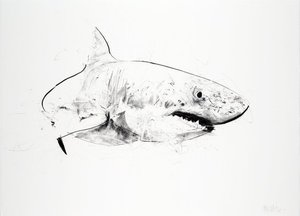 Dave WHITE - Print-Multiple - Great White