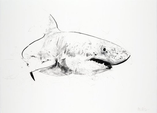 Dave WHITE - Estampe-Multiple - Great White