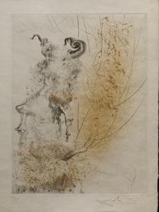 萨尔瓦多·达利 - 版画 - Faust Tete de Veau