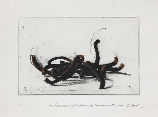 Bernar VENET - Estampe-Multiple - Random combination of indeterminate lines