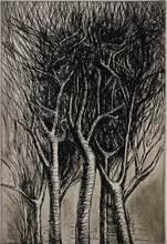 亨利•摩尔 - 版画 - Upright branches Pl. II