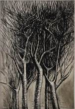 Henry MOORE - Print-Multiple - Upright branches Pl. II