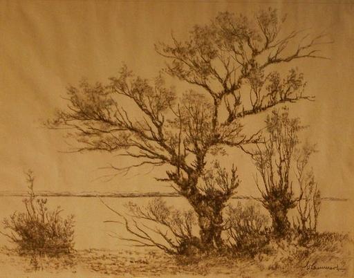 Eduard LAMMERT - Dibujo Acuarela - Weiden am Wasser