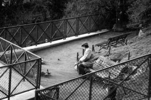 Robbert Frank HAGENS - Photography - Small Bird - Park Montmartre - Paris 1975