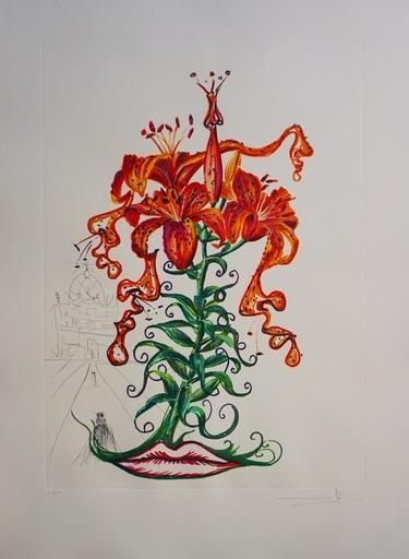 萨尔瓦多·达利 - 版画 - Florals Tiger Lilies