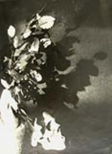 Frantisek DRTIKOL - Fotografia - (skull with flowers)