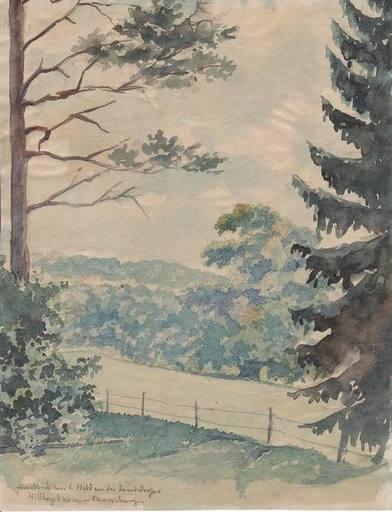 Henriette SCHMIDT-BONN - Pintura - Ausblick aus dem Wald an der Landstraße