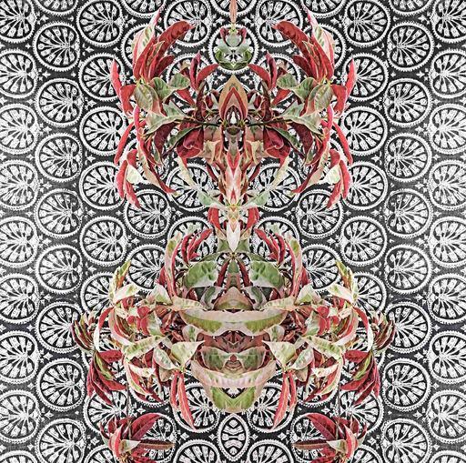 Sumit MEHNDIRATTA - Stampa Multiplo - Bohemian botany