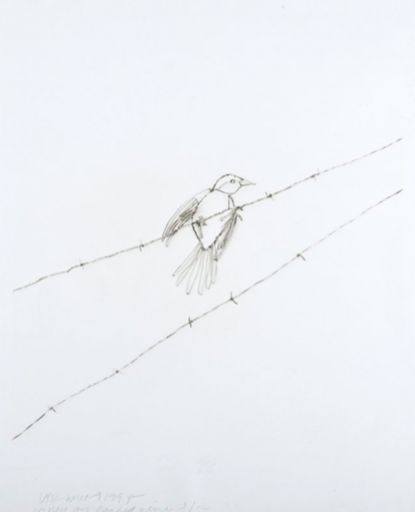 Vik MUNIZ - Estampe-Multiple - Vireo on Barbed Wire