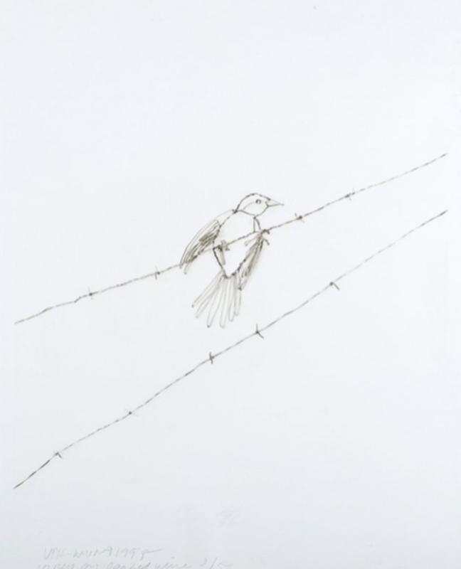 Vik MUNIZ - Estampe-Multiple - Vireo on Barbed Wire