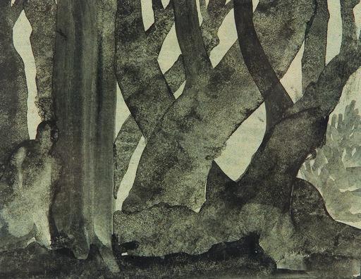 Robert AIGNER - Dibujo Acuarela - Dunkler Wald