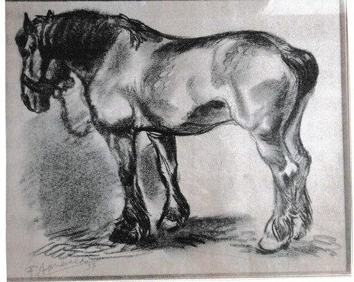 Frans HAZEVELD - Dibujo Acuarela - Cheval de trait brabanson