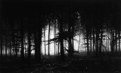 Robert LONGO - Photography - Forest of Doxa