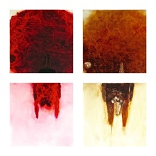 Izumi KATO - Peinture - Chikai-hito (red & brown)