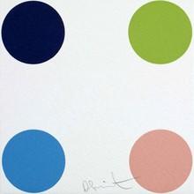 Damien HIRST - Grabado - Ammonium Sulfamate