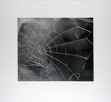 维加•塞尔敏斯 - 版画 - Spider-Web,