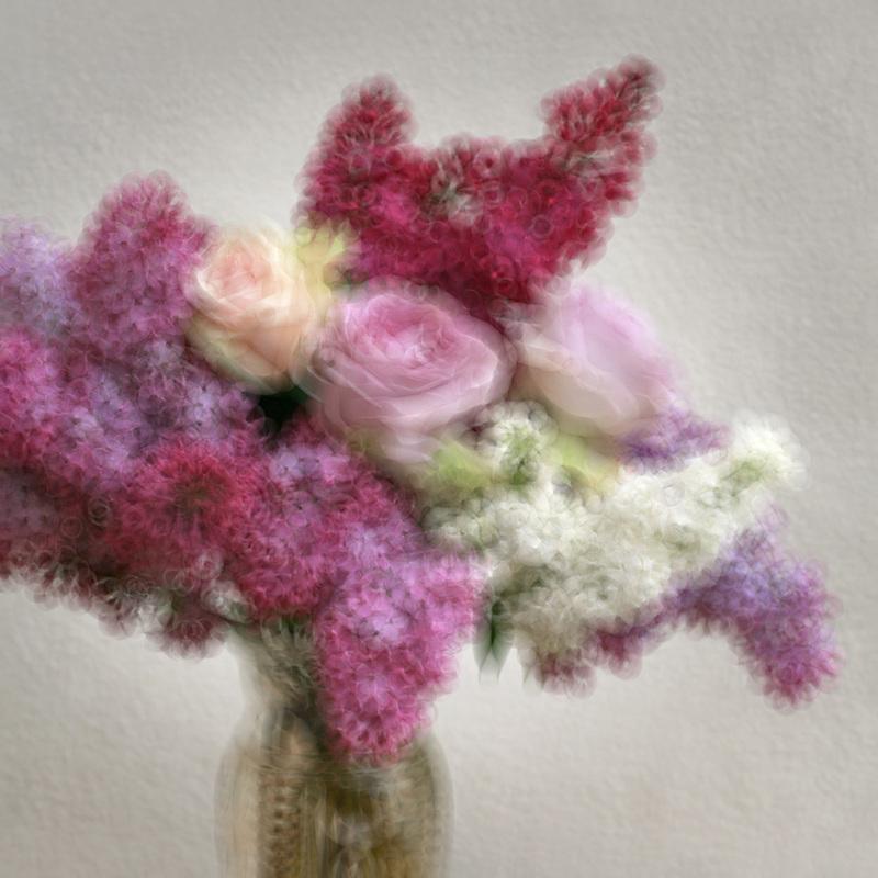 Annie BARDOULAT - Fotografia - Lila et roses 6