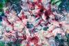 AKKADIA - Stampa Multiplo - Valerie 1831 - 1854 II / Series Leftovers
