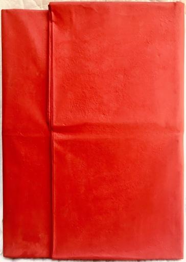 Cesare BERLINGERI - Pintura - Piega rossa