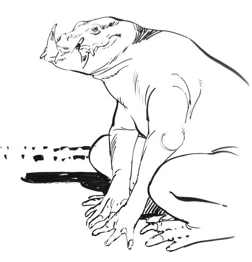 François BOUCQ - Drawing-Watercolor - « Le péril Pied-de-Poule »