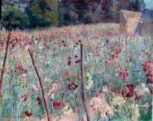 Pierre Emmanuel DAMOYE - Painting - Wiesenblumenfeld