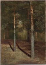 Ivan Ivanovitch SHISHKIN - Pintura