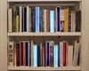 Martin RICHMAN - Escultura - Bookspaces