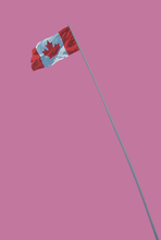Charles PACHTER - Painting - Painted Pink Flag
