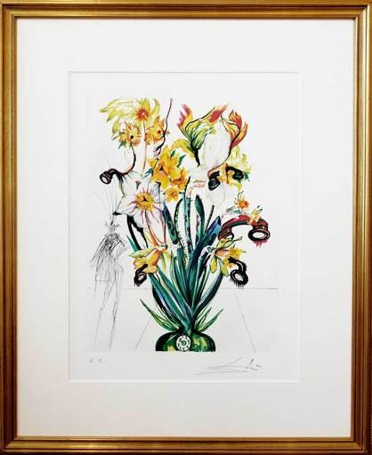 萨尔瓦多·达利 - 版画 - Narcissus telephonans inondis